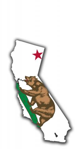 California State Flag Outline (White Background) Themed Custom Cornhole Board Design