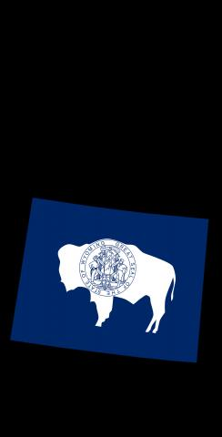 Wyoming State Flag Outline (Black Background) Themed Custom Cornhole Board Design