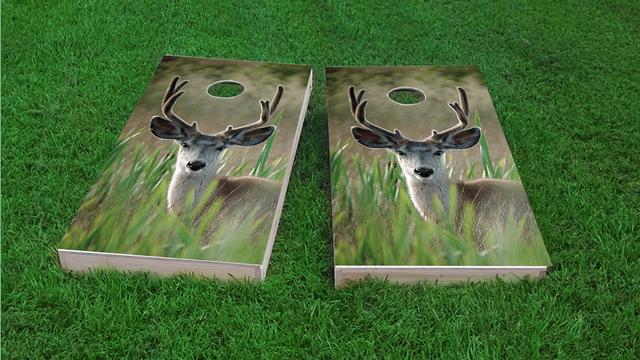 Mule Deer in Wetlands