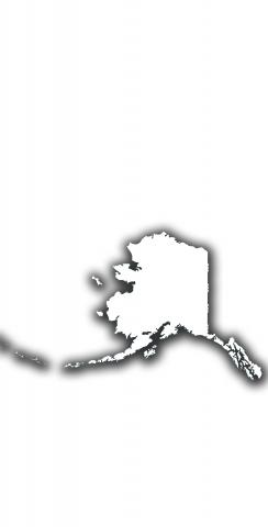 White Alaska Themed Custom Cornhole Board Design