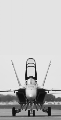 F-18 Hornet Fighter Jet