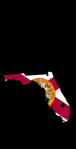 Florida State Flag Outline (Black Background) Themed Custom Cornhole Board Design