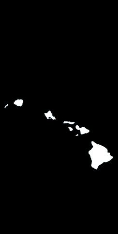 Black Hawaii Themed Custom Cornhole Board Design