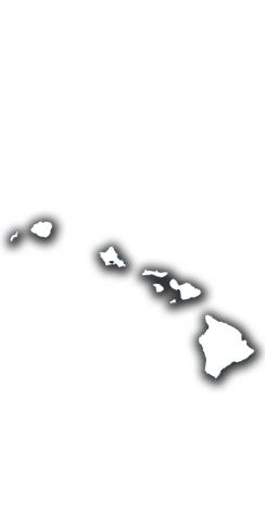 White Hawaii Themed Custom Cornhole Board Design