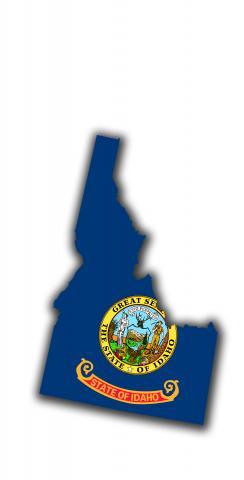 Idaho State Flag Outline (White Background) Themed Custom Cornhole Board Design