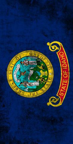 Worn State (Idaho) Flag Themed Custom Cornhole Board Design