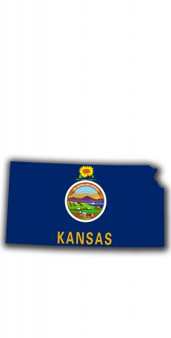 Kansas State Flag Outline (White Background) Themed Custom Cornhole Board Design