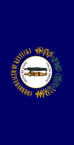 Kentucky State Flag Themed Custom Cornhole Board Design