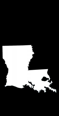 Black Louisiana Themed Custom Cornhole Board Design