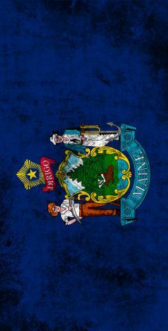 Worn State (Maine) Flag Themed Custom Cornhole Board Design