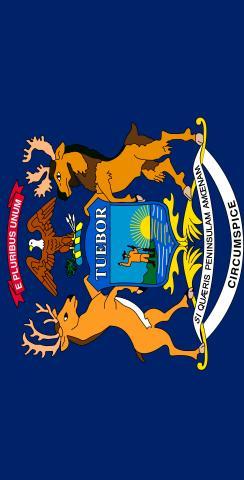 Michigan State Flag Themed Custom Cornhole Board Design