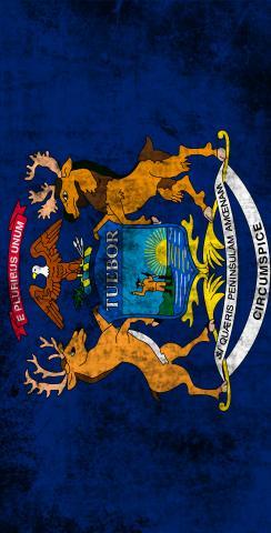 Worn State (Michigan) Flag Themed Custom Cornhole Board Design