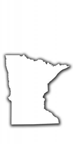 White Minnesota Themed Custom Cornhole Board Design