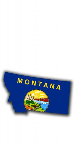Montana State Flag Outline (White Background) Themed Custom Cornhole Board Design