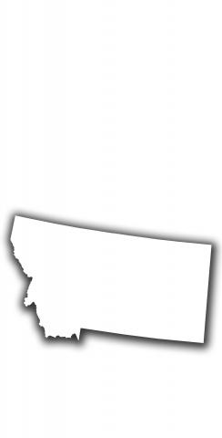 White Montana Themed Custom Cornhole Board Design