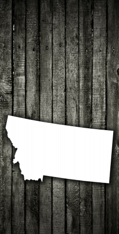 Wood Slat State (Montana) Themed Custom Cornhole Board Design