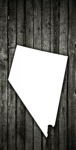 Wood Slat State (Nevada) Themed Custom Cornhole Board Design