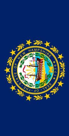 New Hampshire State Flag Themed Custom Cornhole Board Design