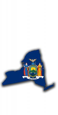 New York State Flag Outline (White Background) Themed Custom Cornhole Board Design