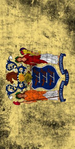 Worn State (New Jersey) Flag Themed Custom Cornhole Board Design