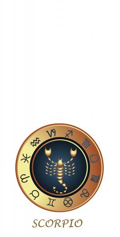 Zodiac White (Scorpio) Themed Custom Cornhole Board Design