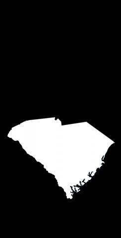 Black South Carolina Themed Custom Cornhole Board Design