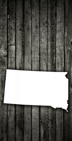 Wood Slat State South Dakota Themed Custom Cornhole Board Design