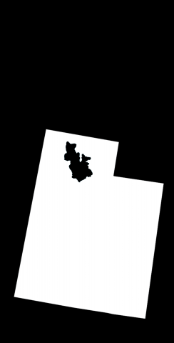 Black Utah Themed Custom Cornhole Board Design