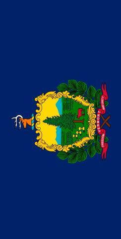 Vermont State Flag Themed Custom Cornhole Board Design