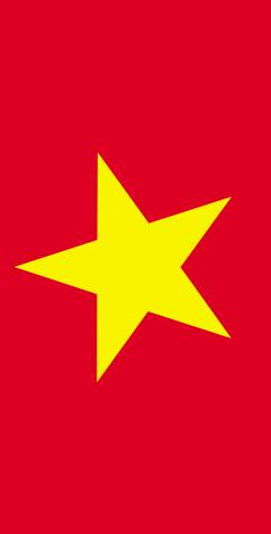 Vietnam National Flag Themed Custom Cornhole Board Design
