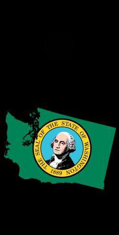 Washington State Flag Outline (Black Background) Themed Custom Cornhole Board Design