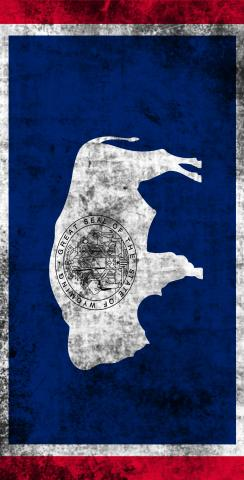 Worn State (Wyoming) Flag Themed Custom Cornhole Board Design