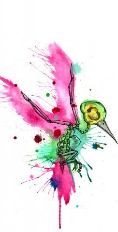 Bird Art Themed Custom Cornhole Board Design