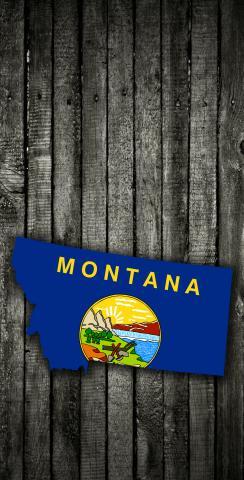 Wood Slate State Flag & Map (Montana) Themed Custom Cornhole Board Design